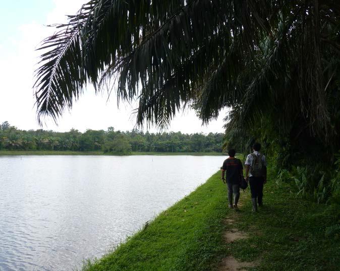MENYEGARKAN MATA: Bagian dalam area waduk reservoir milik Pertamina. Melewatinyaperlu izin khusus otoritas setempat.